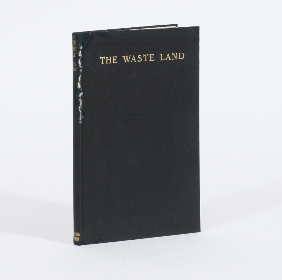 ts eliot the waste land Eliot provided this set of original notes on his masterpiece the waste land, partly to pad out the poem (which was published as a single book), partly to clear up some of its obscurities, and.